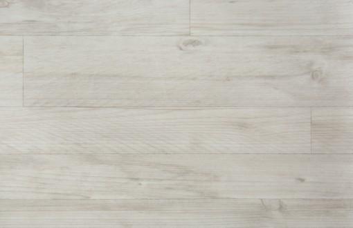 Spruce-White